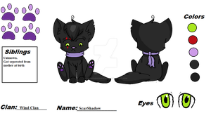 Cats W- ScarShadow reference by PokemonBWishesCilan