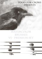 Watercolour Premium Brush Set 2015 by Food-For-Crows