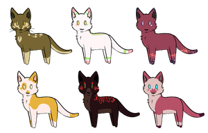 color pallet cat adoptables 2 by lightwoodswhip