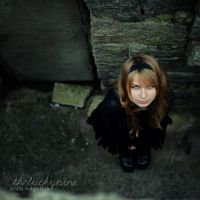 down the rabbit hole by theluckynine