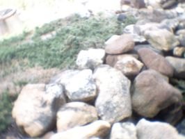 More rocks by thelcru