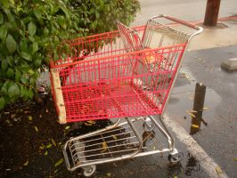 Shopping Cart by Pickles4LES