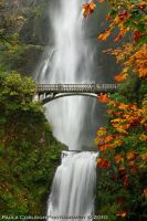 Waterfall - Multnomah Falls 'n Fall Leaves by La-Vita-a-Bella