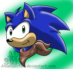 Sonic Boom by Amandaxter