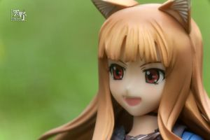 Horo the Wise Wolf - 2 by Amano7