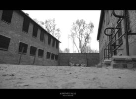 Auschwitz 0218 by JuliaKretsch