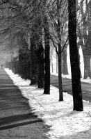 Cold shadows. by Phototubby