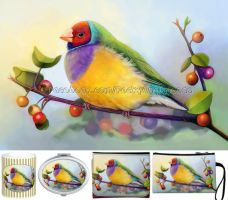 Lady Gouldian finch by emmil