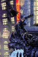 Catwoman _ Serwaka's Colours by natelyon