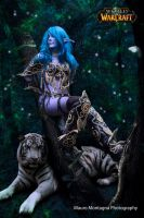 Me as Night elf. by ladymisterya