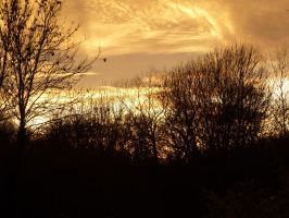 8 Dec Sunset From My House 004 by SrTw