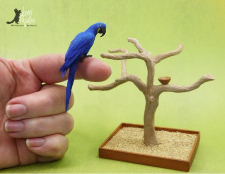Miniature Hyacinth Macaw sculpture by Pajutee