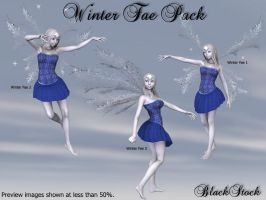 Winter Fae Pack by BlackStock