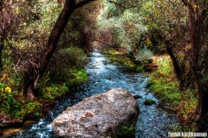 Where The Water Flows by Ferhal