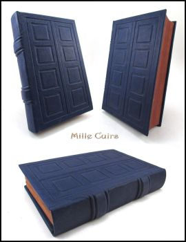 River Song's TARDIS journal by MilleCuirs