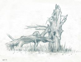 Life Drawing Dyrehaven Tree 02 by JakobHansson