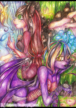 C.E. +.Mushroom Forest.+ by EvilOverlord0