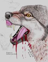 anger and rage in wolf form by NatsumeWolf