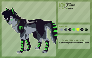Claw Character Sheet by SnowyCakes