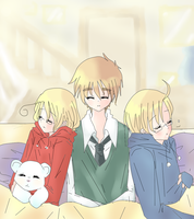 Hetalia - Ace family by Mi-chan4649