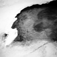 Man in the Ice by Zemni