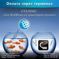 WebMoney + Staleks 1 by Julia-Life-Aspect
