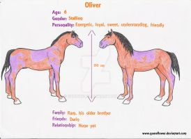 Oliver ref by Subdivided