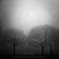Viva Emptiness III by disies