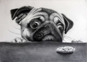 Hungry Pup by donchild