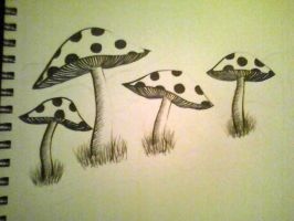 4 shrooms by kattmarie96