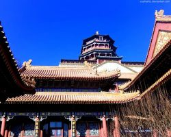 The Summer Palace by Sophie-Y