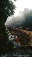 Early Morning Railroad Scene by MossBerg850