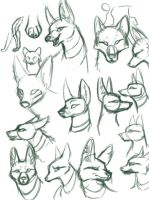 Jackal practice by taumeow