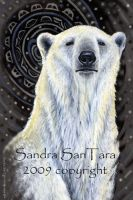 Polar Bear Card by ssantara
