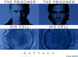 J2 - Gattaca_poster by madhutter