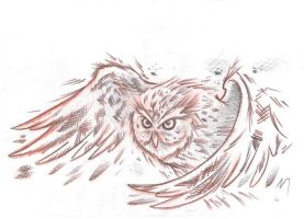 sketchy owl in flight by AsatorArise