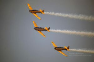 3 Harvard Aerobatics Team by 8TwilightAngel8