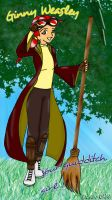 Your quidditch girl by Dona-chan