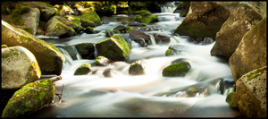 River 04 by cze-Cappi