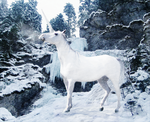 .the ice unicorn. by wingdream