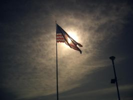 American Flag by flamingpig
