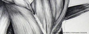 Romanian Three-Tail Study - Thoracic Detail by LeccathuFurvicael