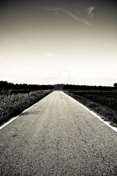 black and white street by luckyj