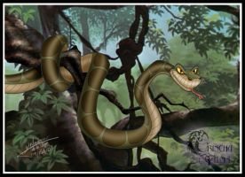 KAA by Grincha
