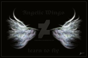 Angelic wings learn to..fly by priesteres-stock