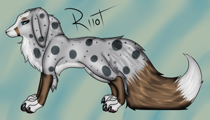 Riiot by Oxipie