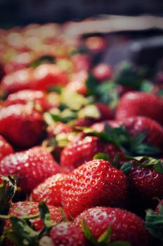 strawberry fields forever by HelloKimmy13