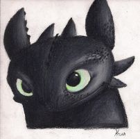 Toothless by Pokemon-Chick-1