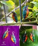 Kingfisher Earrings by TrollGirl