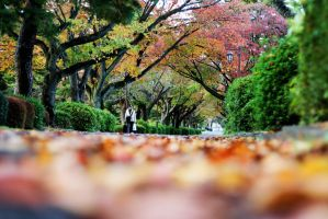Welcome Autumn. by Haych